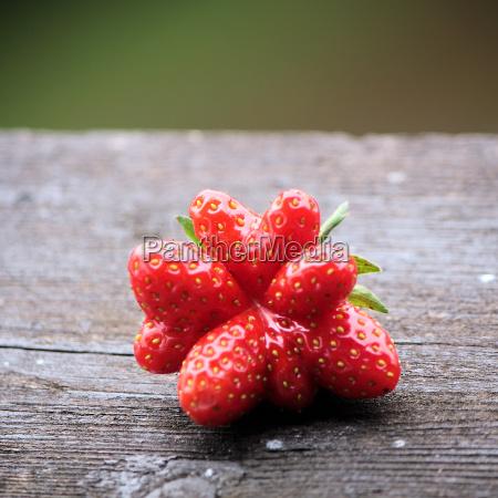owoc owoce owocowe truskawka jagody holzbrett