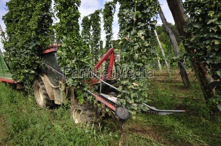 rolny gospodarstwo rolnictwo architektura chmiel zawod