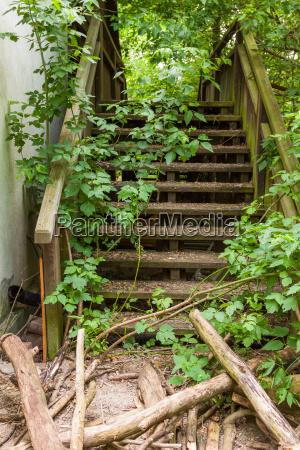 schodek schody drewno drewna holztreppe